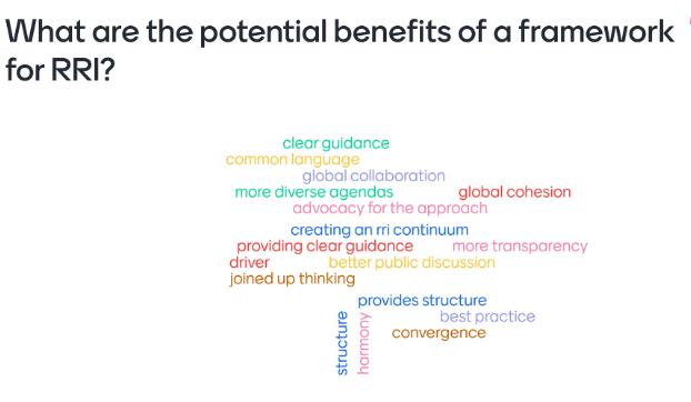 Benefits of a global RRI network